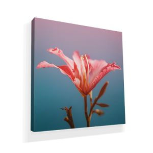 Cheap Outdoor Canvas Poster printing all over the UK | Free delivery and 100% satisfaction guarantee for all personalised Outdoor Canvas posters with Ekoprint.de