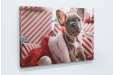 Offer meaningful memories for Christmas with personalised photo canvas